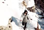 video-allevamento-cane-lupo-cecoslovacco-lupi-del-nord